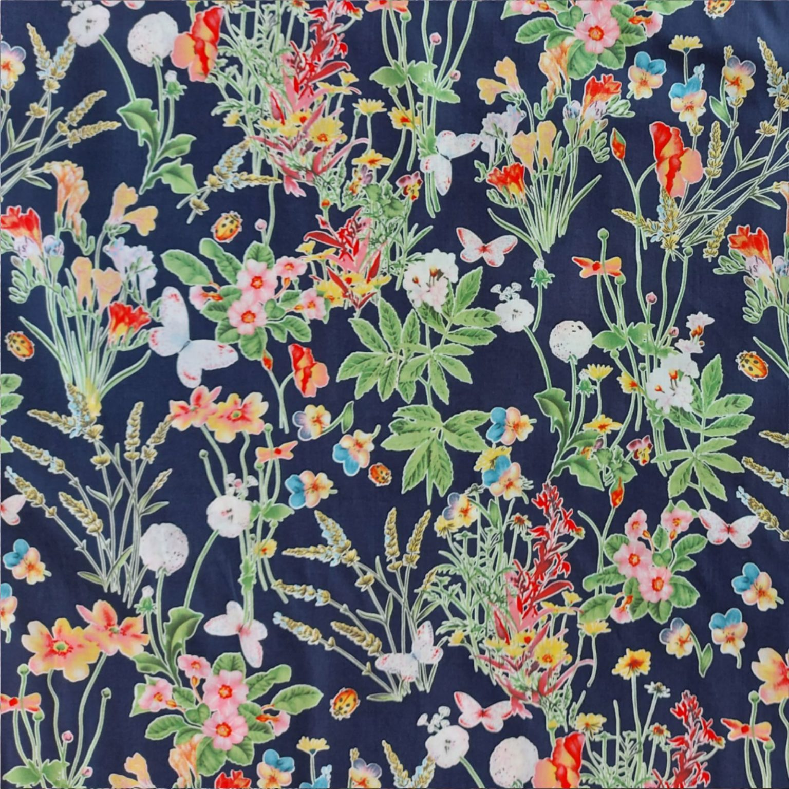 Dress Fabric | Lavender Ladybirds Navy Blue Pima Cotton Lawn | More Sewing